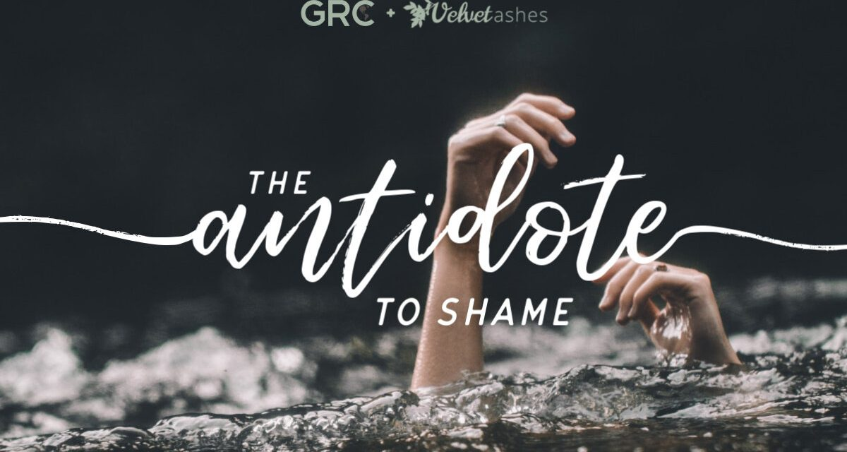 1) The Antidote to Shame Webinar (Act Quickly: This Webinar is on the 26 of March!!)