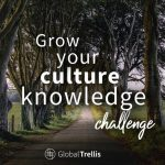 4) Grow Your Culture Knowledge