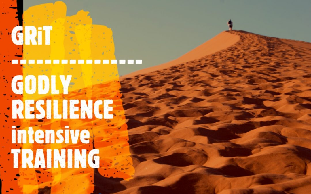 3) Godly Resilience Training (GRiT) Discount for Brigada Readers